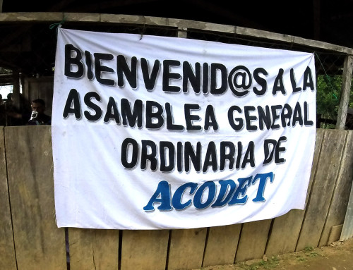 ACODET reaffirms peaceful resistance to the Xalalá Dam amid threats to environmental activists