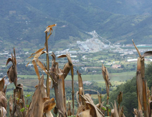 Guatemala's Highest Court Orders Tahoe's Escobal Mine to Remain Suspended