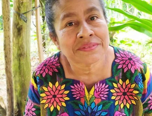 """We must not be discouraged"" – An interview with Dolores Cu"