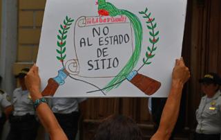 Imágen dice: Libertad! No al Estado de Sitio.