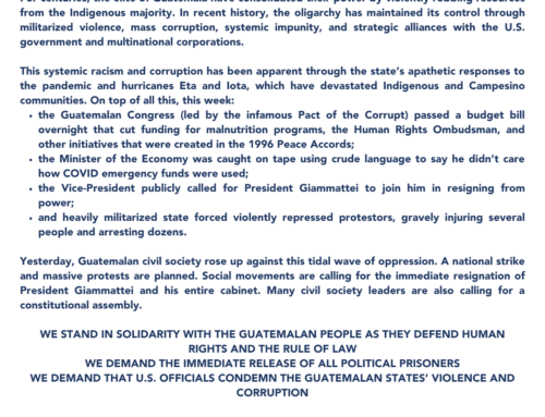 #NoNosPela // Solidarity with the Guatemalan uprisings