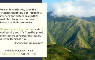 "An image of Guatemalan mountains with a text box over. The text reads: ""We call for solidarity with the struggles fought by our Indigenous brothers and sisters around the world for the protection and defense of their territories. We must come together to protect biodiversity and life from the greed of extractive corporations that put all living things at risk. --Excerpt from the statement. SIGN IN SOLIDARITY AT NISGUA.ORG/TAKE-ACTION"""