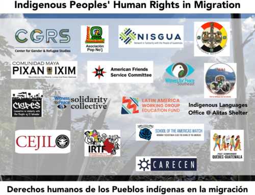 Petition: Indigenous Peoples' Human Rights in Migration