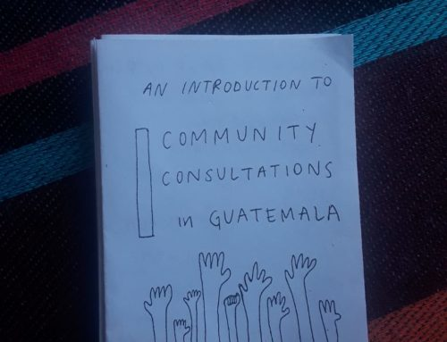 Accompanier Zine: An Introduction to Community Consultations in Guatemala