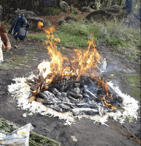 At the center of the picture, in the middle of a forest, a sacred fire is being burned. Around the woodfire, petals of white flowers surround the fire.